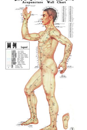 Acupuncture Miami Dr. He - Acupuncture Chart