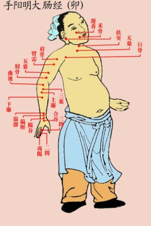Acupuncture Miami Dr. He - Ancient Acupucture Chart