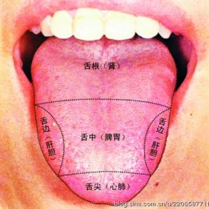 Cancer Acupuncture Holistic Care Dr. He - Traditional Chinese Medicine Tongue diagnosis